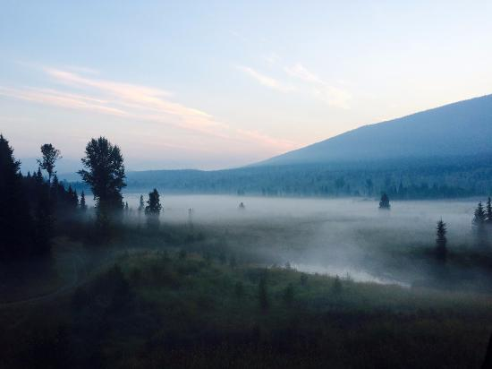 Clearwater Springs Ranch: View from the Moose Room's balcony at 06:00 in the Morning...pure Nature...