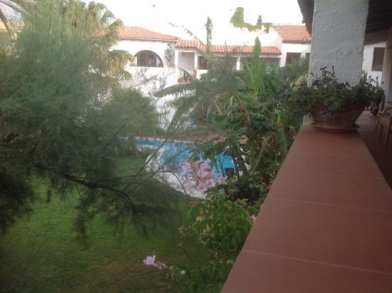 Hotel Villa Mediterranea: Giardino