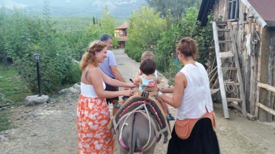 Sibel's Four Seasons Cafe & Restaurant: Donkey ride before dinner