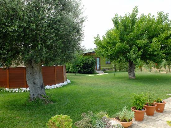Il giardino picture of b b antica campagna recanati for Giardini di campagna