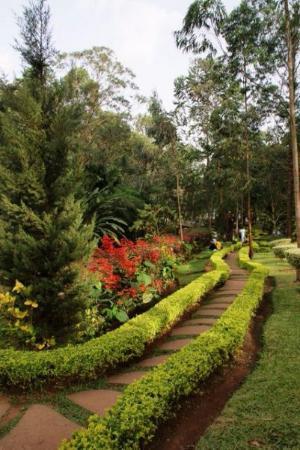Jardin du bois Sainte Anastasie