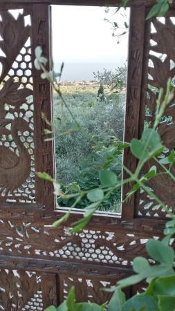 Magnesia Region, Griekenland: View from the garden