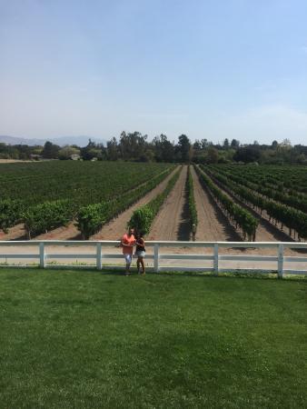 Captain Jack's Santa Barbara Tours