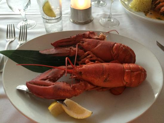 Lobster picture of a fish called avalon miami beach for Fish call review