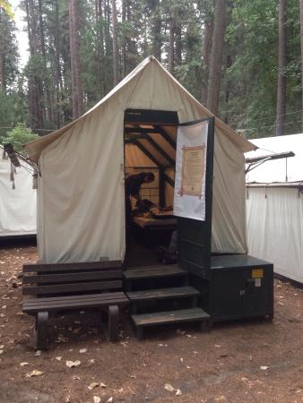Four bed tent cabin in curry village picture of half for Half dome tent cabins