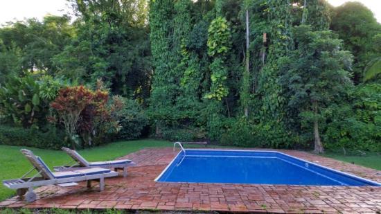 Keaau, Hawái: The wonderful pool