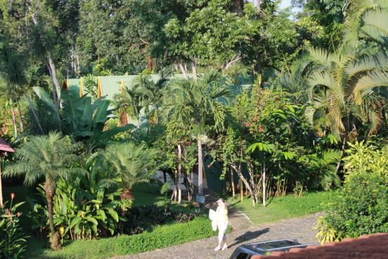 Foto de hotel y bungalows el jardin retalhuleu jard nes for Bungalows el jardin retalhuleu guatemala