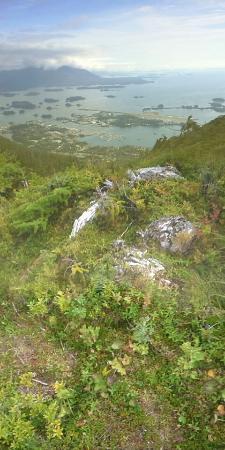Harbor Mountain Trail: On top of harbor mountain