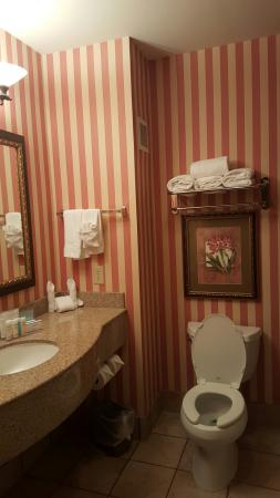 Hampton Inn & Suites Dallas-DFW ARPT W-SH 183 Hurst: 1970's Circus Circus Hotel Bathroom look alike at the Hampton