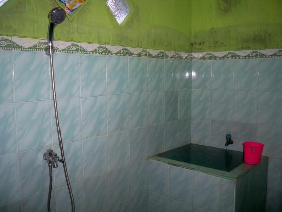 Kawah Ijen Guest House: bathroom