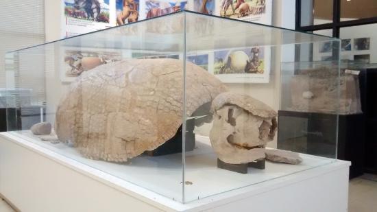 Museo Don Santos Tosticarelli