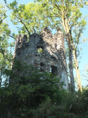 Burg Fluhenstein