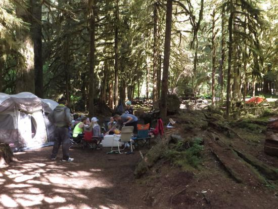 Sol Duc Campground: view of our 2 campsites