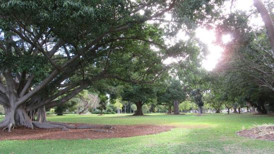 Queens Gardens Townsville North Ward Aktuelle 2017 Lohnt Es Sich