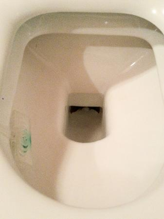Pavisa Apartments: This toilet has not been cleaned since Diocletian times