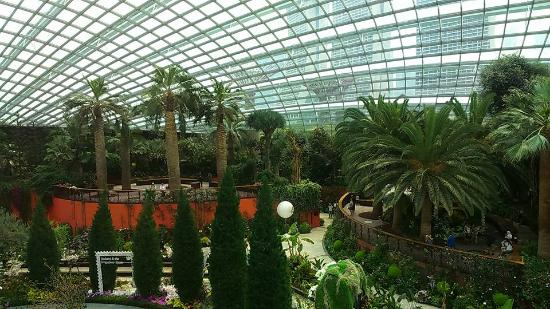 Indoor Garden - Picture of Gardens by the Bay, Singapore - TripAdvisor