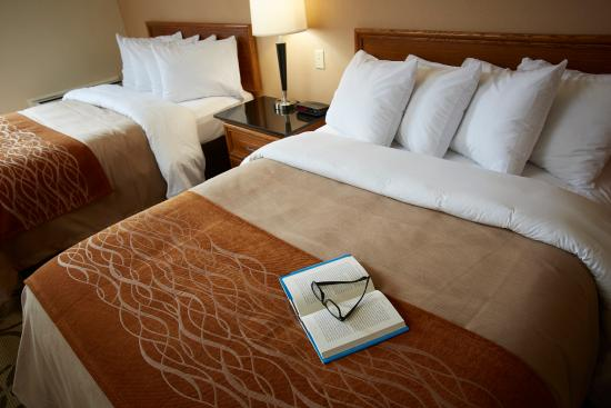 Comfort Inn Edmonton West : Perfect For Family Or Group Stays