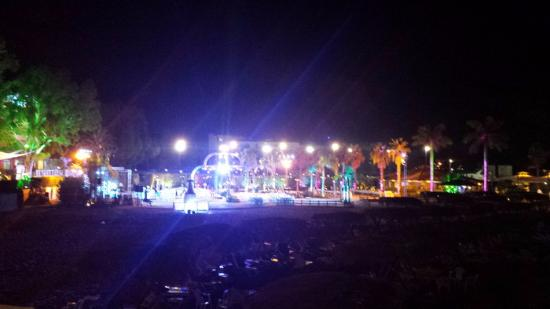 Florida Beach Hotel & Resort: A Wedding party