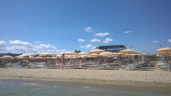 Antipasto Picture Of Bagno Belvedere Cesenatico Tripadvisor