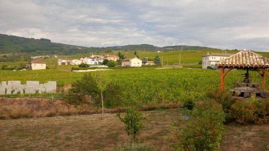 Maison d'Hotes en Beaujolais : View from Les Foins