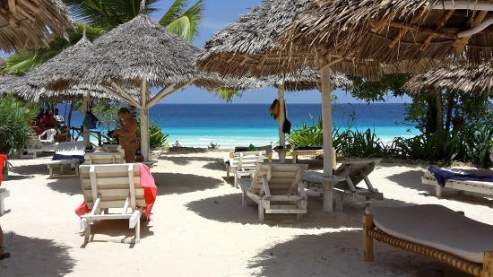 Ora Resort Nungwi Lodge: Solarium