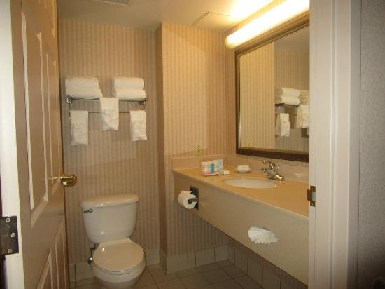 Bathroom picture of hampton inn council bluffs council for Bathroom design leeds