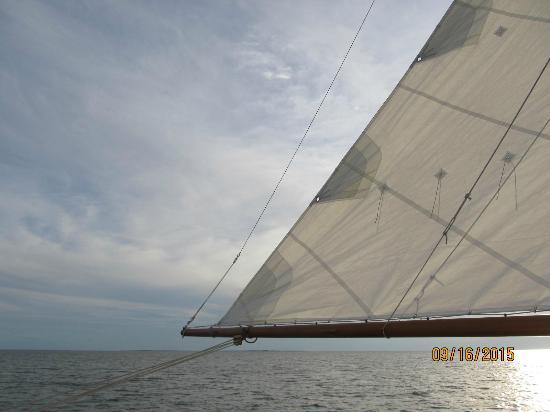 Schooner Windfall II: Wilma Jack at sea