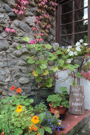 Moonlight Chalet : Jardin poétique