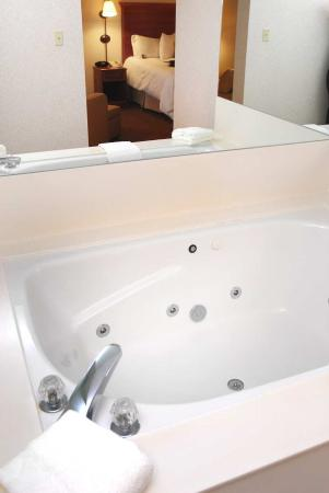 Hampton Inn Columbus Airport: King Whirlpool