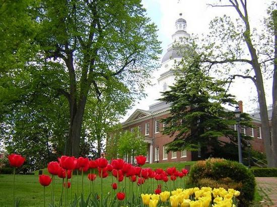 Hampton Inn & Suites Annapolis: Maryland State House