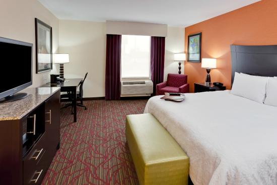 Hampton Inn Seneca Falls: King Guestroom