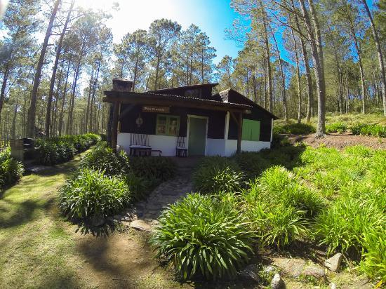 Villa Pajon, Eco-Lodge in Valle Nuevo