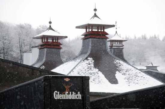 Glenfiddich Distillery Tour Review