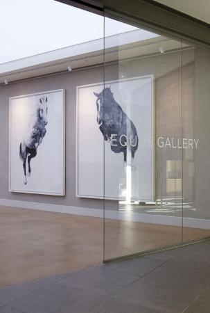 Equus Gallery