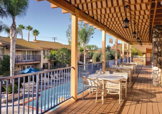 Dolphin's Cove Resort: Resort view