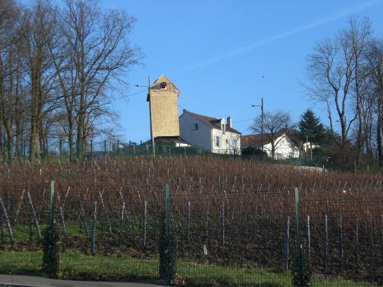 Sannois, Francia: la vigne en contre bas