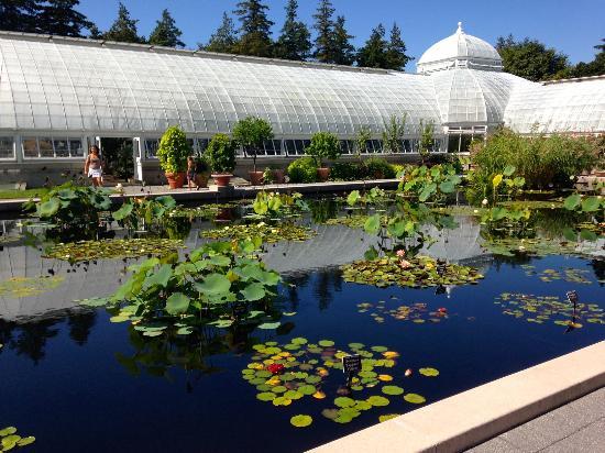 La replica de la casa azul de frida khlao picture of new york botanical garden bronx for Bronx botanical garden free admission