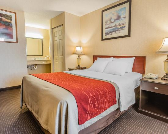 Comfort Inn Port Orchard