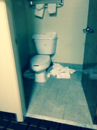 Red Roof Inn & Suites Jackson - Brandon : Nasty bathroom