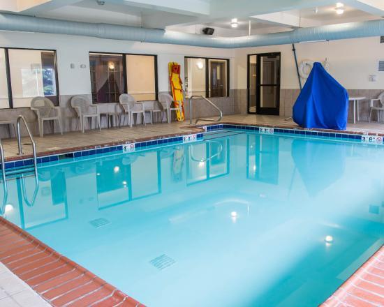 Comfort Suites Wixom: Mi Pool
