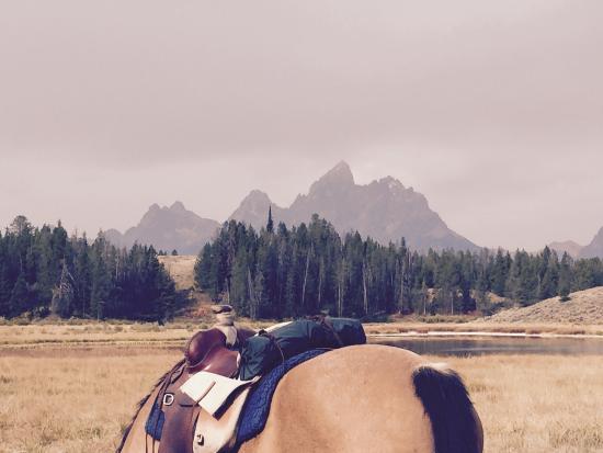 Triangle X Ranch