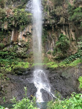 Cascada Los Azules: Caída de agua Los Azules para rappel