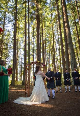Kitsap Memorial State Park Wedding.Wedding Ceremony Out In The Forest Picture Of Kitsap