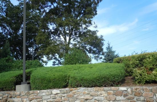 Microtel Inn & Suites by Wyndham Sainte Genevieve: Landscape