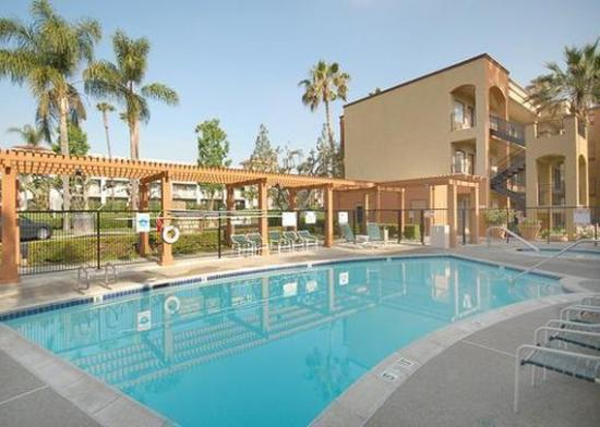 Cheap Pet Friendly Hotels In Orange County Ca