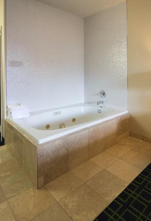 Fairfield Inn Seattle Sea-Tac Airport : Hot tub in our room!