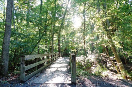 Don White Memorial Park