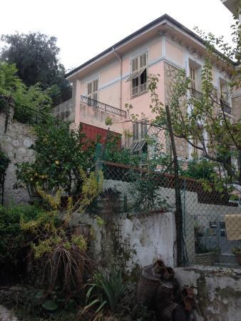 Villa Saphir : один из домиков виллы и часть сада