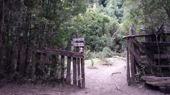 Refugio Cochamo (La Junta): últimos metros de uma caminhada sofrida