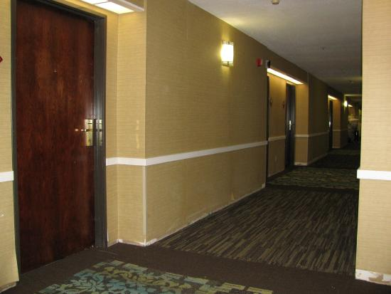BEST WESTERN St. Louis Inn: You can see the hallway for yourself.
